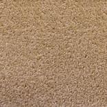 Standard Beige Carpet Garden Room Flooring