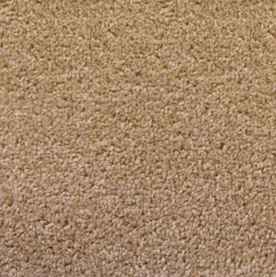 Standard Beige Carpet Garden Room Flooring