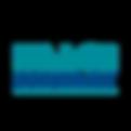 IMAGE DG logo 2019 (NOT Embossed)-01.png
