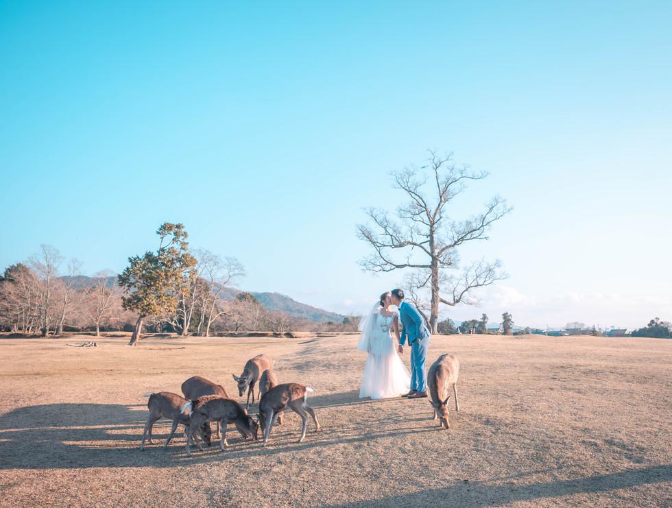 Couples in Nara