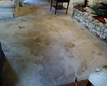 before carpet was cleaned