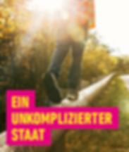 unkomplizierter_staat_fdp.png