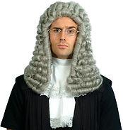 Judge's Court Wig.jpg