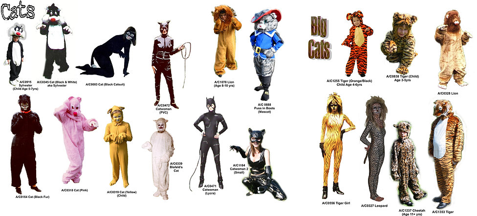 CatsMontageA3.jpg