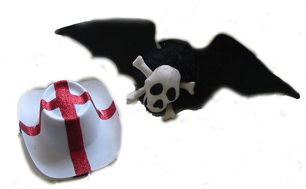 St George & Bat Hat.JPG