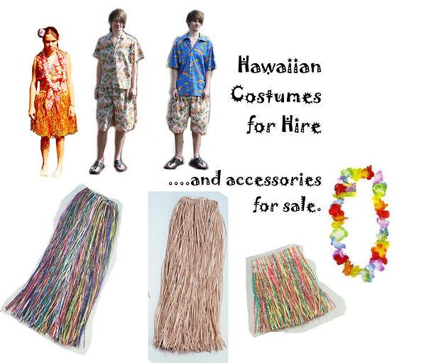 Hawaiian Costumes & Accessories.jpg