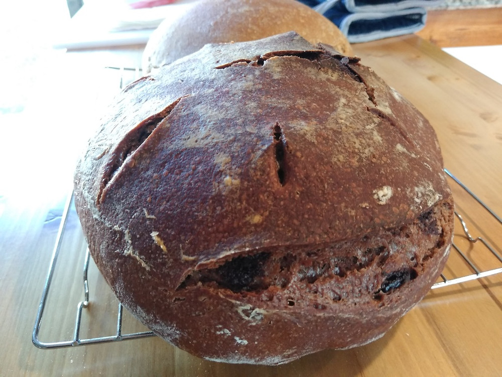 chocolate sourdough loaf of bread