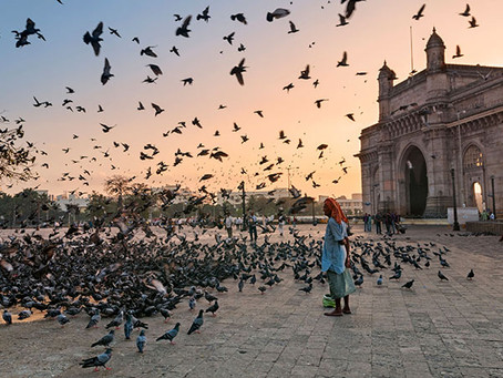 14 incríveis lugares para visitar na Índia