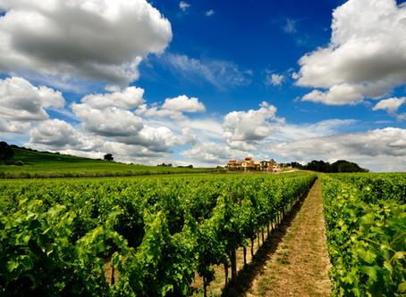 As 10 vinícolas que você deve conhecer na Itália