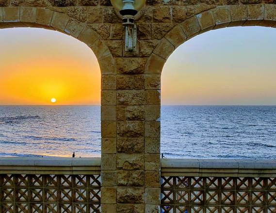 צילום: ענת גבריאלי, אנשי הים התיכון
