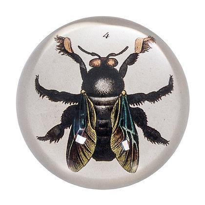 Briefbeschwerer Biene