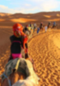 📌_Camel_trek_through_the_Sahara_Desert_