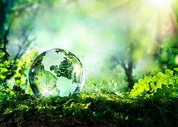 World-Environment-Day-1.jpg