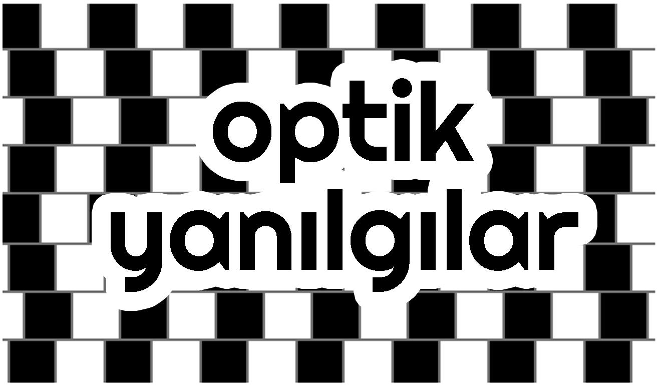 optik kapak