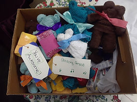Teddybear Washcloths delivery to Shelter
