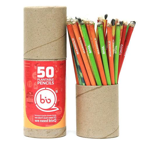 bioQ Box of 50 Plantable Seed Pencils | Eco Friendly Gift Box