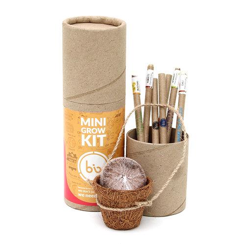 bioQ Eco Friendly Plantable Mini Grow Kit Set (Kids Special)