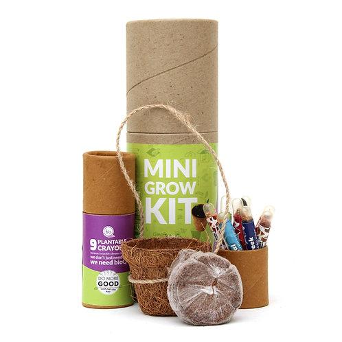 bioQ Plantable Mini Grow Kit | Mini Coco Pot Planter and Coco Peat