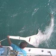 florida_fishing_holiday2-300x223.jpeg