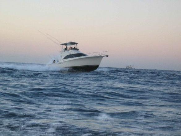 Cabo-san-lucas-boats-2-533x400.jpeg