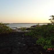 GuineaBissau2013155_zps4eadc2d61-300x225