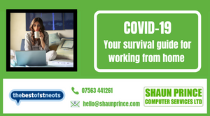 Coronavirus – Survival tips for working at home