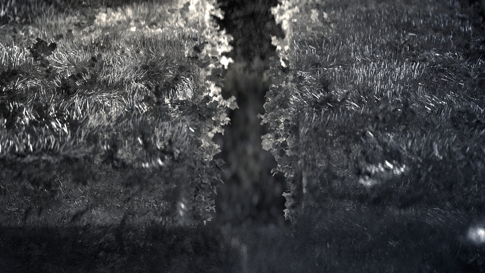 BRE1901_CCTV_GROWTH_B.jpg