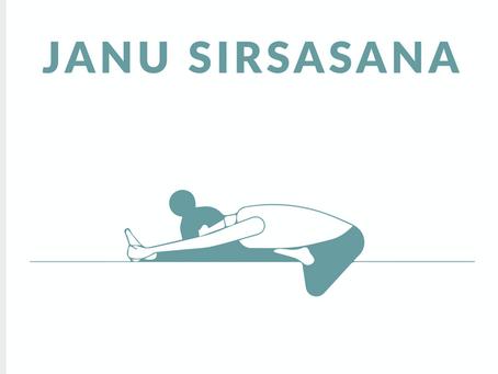 Janu Sirsasana / Head to Knee Pose
