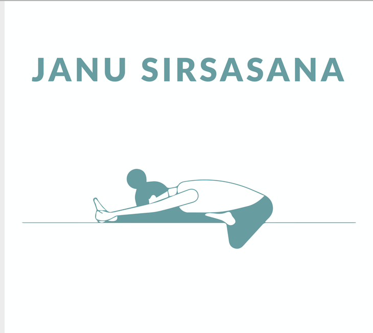 Janu Sirsasana, Head to Knee Pose yoga