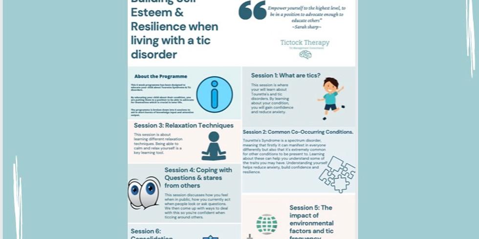 TEEN - Self Esteem & Resilience group online Programme