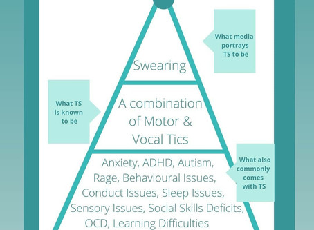 A brief overview of common co-occurring conditions associated with Tourette Syndrome.