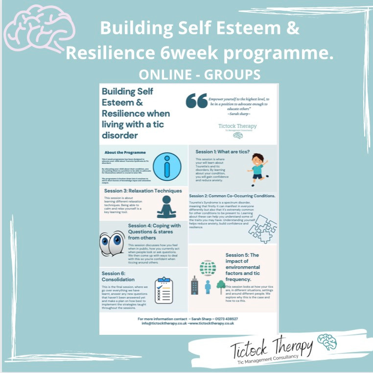 Age 7-13 Self Esteem & Resilience online/ group programme