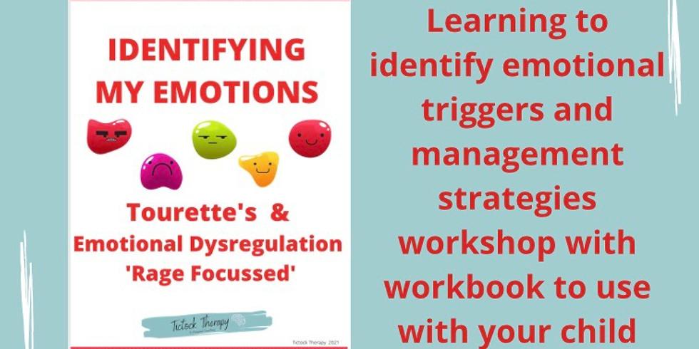 Identifying emotions workshop