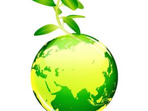 La vie en vert