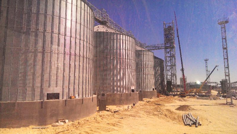 Строительный аудит перегрузочного комплекса, силосов, склада зерна, зернохранилища