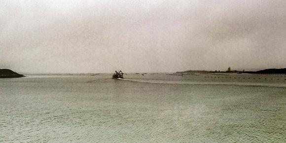 'Roaring Water Bay Farm', Archival Print (framed)