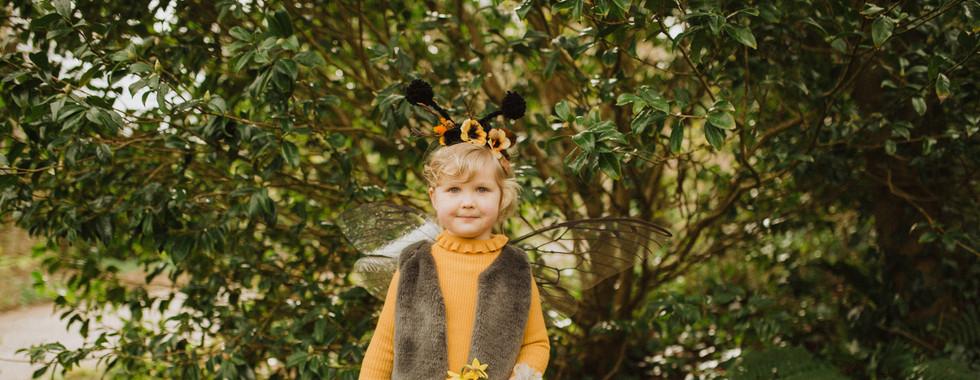 Hedgerow Baby Bee