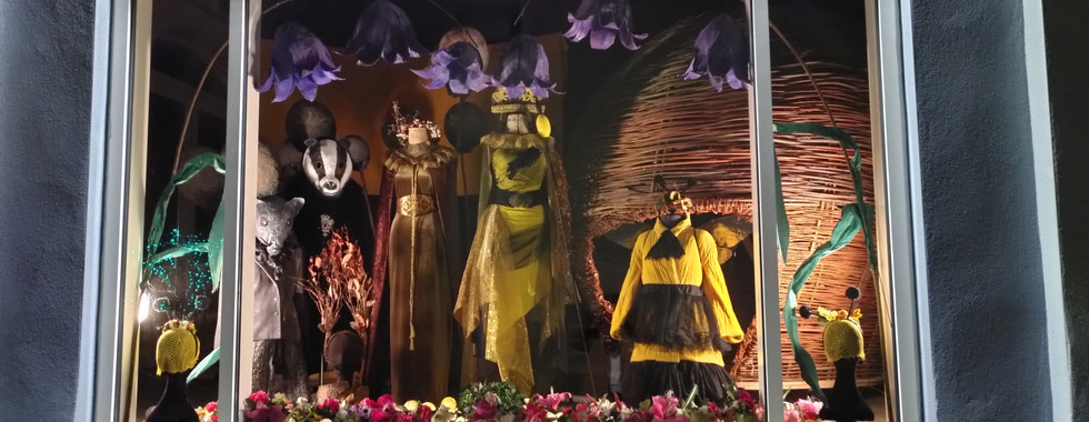 Costume Display by night