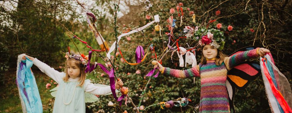 Meadow Flower Fairies