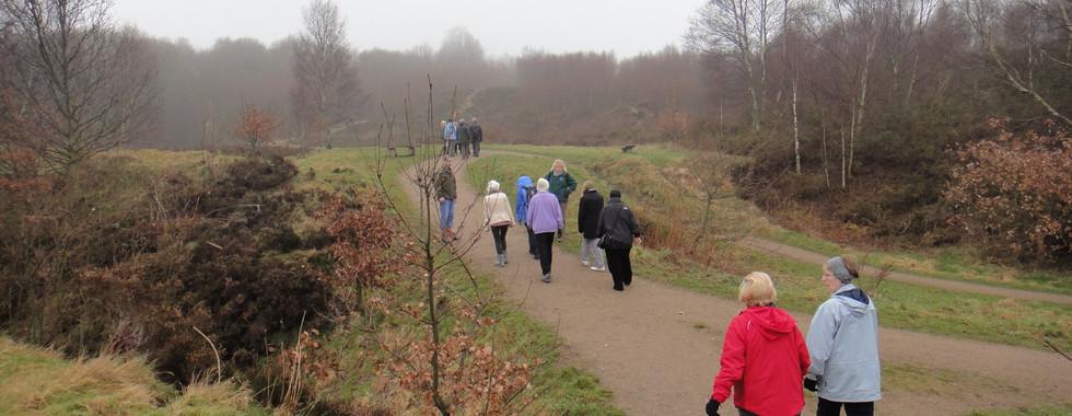 Health Walk Group Consultation