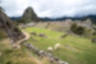 SouthAmerica_20160628-471.jpg