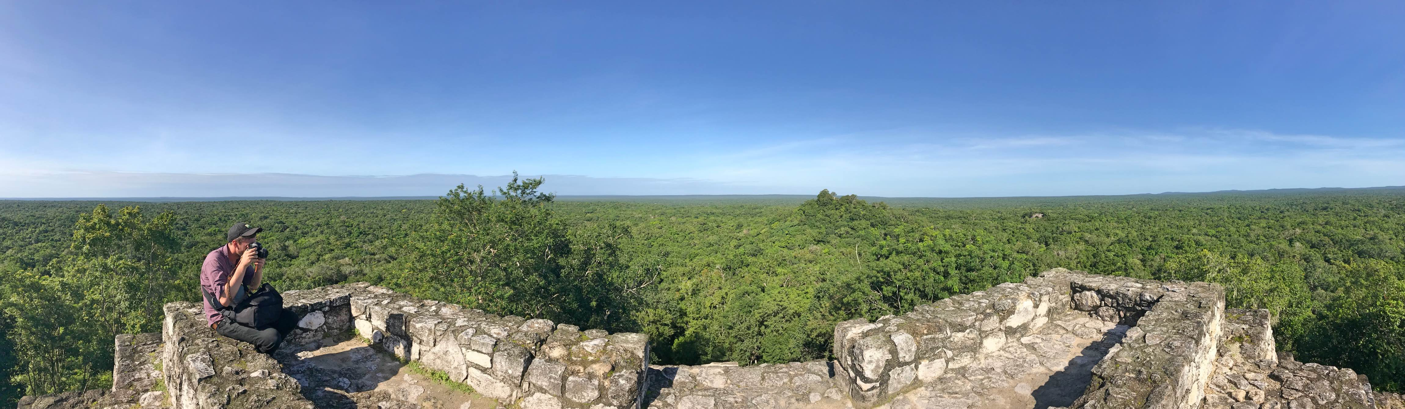 Jungle panoramic at Calakmul