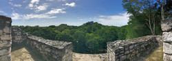 View from Structure VII at Calakmul