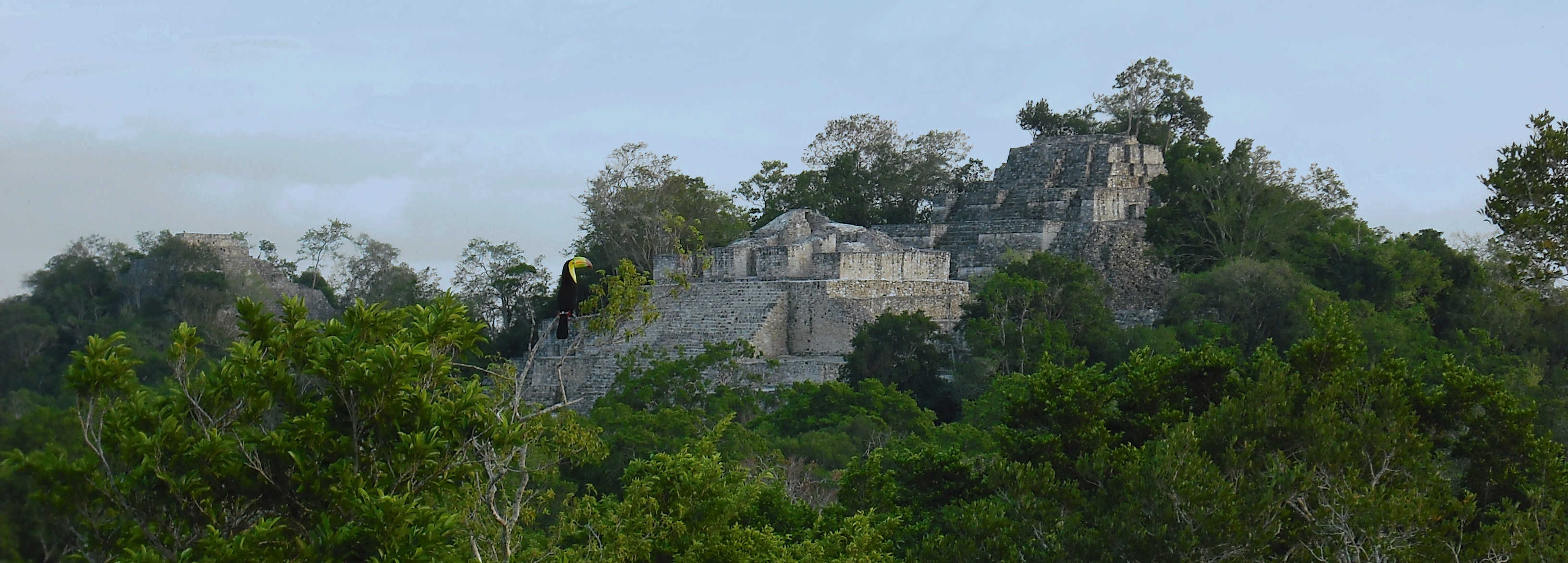 View of Structure II at Calakmul
