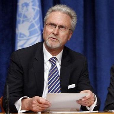 Thelin: Den svenska grundlagsändringen är problematisk