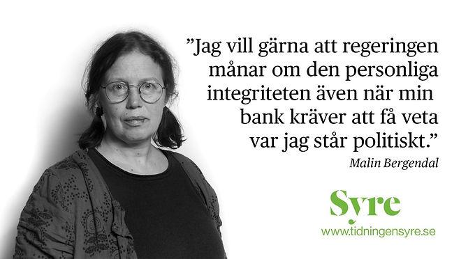 Malin Bergendal: Vi behöver diskutera grundlagsändringen