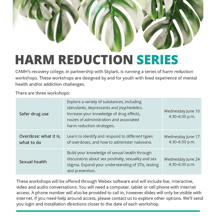 Harm Reduction Webinar Series