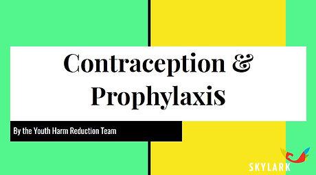 Contraception title.JPG
