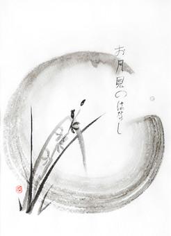 Tsuki - lune d'été