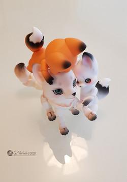 Kitsune Familly